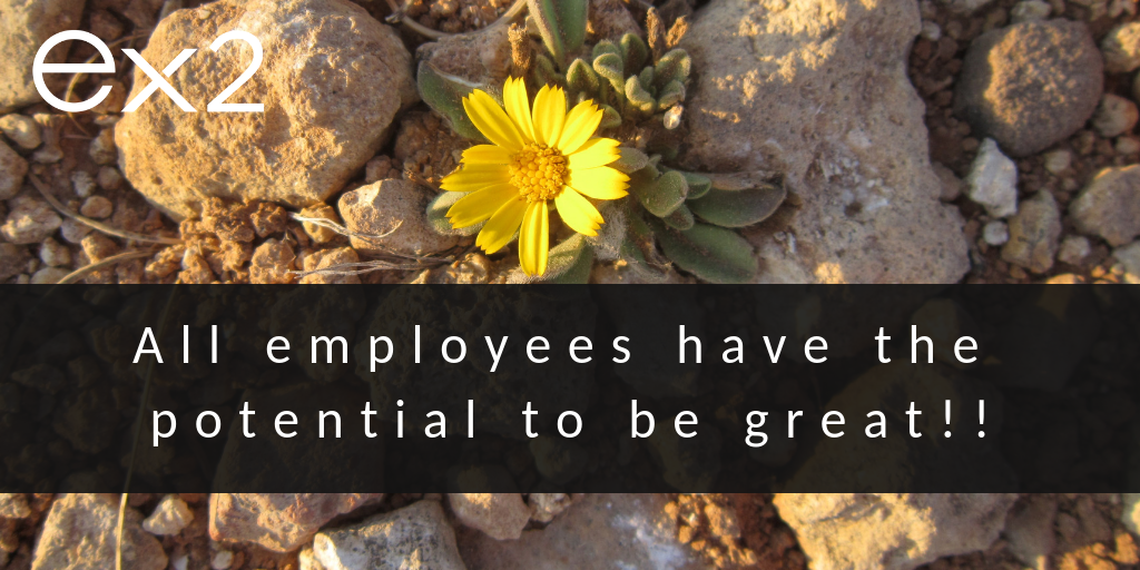 Employee Potential: All employees have the potential to be great!!